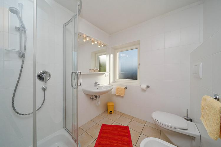 Daylight bathroom with shower